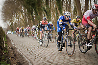 the much anticipated belgian pro debut of young sensation Remco EVENEPOEL (BEL/Deceuninck-Quick Step)<br /> <br /> 74th Nokere Koerse 2019 <br /> One day race from Deinze to Nokere / BEL (196km)<br /> <br /> ©kramon