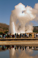 "Yellowstone National Park, Wyoming, WY, USA - Tourists watching Eruption of ""Old Faithful"" Geyser, Upper Geyser Basin"