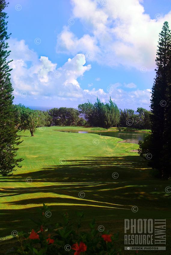 The golf course at Kapalua, Maui.