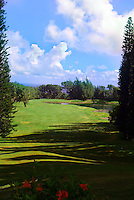 The golf course at Kapalua, Maui.