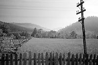 ROMANIA / Moldavia / Bukovina region / May 2007..Landscape...© Davin Ellicson / Anzenberger