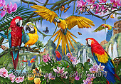 Interlitho-Marcello, REALISTIC ANIMALS, REALISTISCHE TIERE, ANIMALES REALISTICOS, paintings+++++,parrots,KL4521,#a#, EVERYDAY ,puzzles