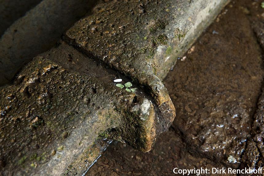 Brunnenheiligtum Su Tempiesu bei Orune, Sardinien, Italien, Nuraghenkutur 2. Jt. v.Chr.