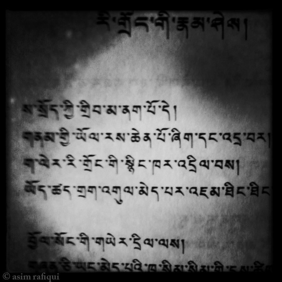 Paradox Of Life by Phuntsok Wangchuk