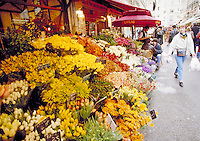 Flowers displayed for sale at outdoor market in Paris, France. Paris, France.