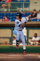 Mahoning Valley Scrappers Raynel Delgado (15) at bat during a NY-Penn League game against the Hudson Valley Renegades on July 15, 2019 at Eastwood Field in Niles, Ohio.  Mahoning Valley defeated Hudson Valley 6-5.  (Mike Janes/Four Seam Images)