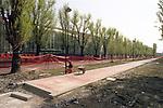 La trasformazione della Città in vista delle Olimpiadi 2006. corso Tazzoli e il Palaghiaccio