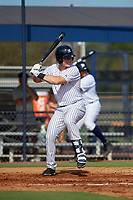 New York Yankees Trey Amburgey (35) at bat during an Instructional League game against the Baltimore Orioles on September 23, 2017 at the Yankees Minor League Complex in Tampa, Florida.  (Mike Janes/Four Seam Images)