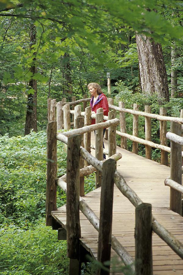 Woman on bridge in forest, Balsam Hollow Trail, Green Gables, Cavendish, Prince Edward Island, Canada