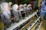 Palestinian students take part in a festival of the Science Days Palestine, at al Qattan Center in Gaza city on October 17, 2017. Photo by Mohammed Asad
