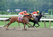 Grand Rapport and jockey Richard Migliore win second race at Saratoga on Aug. 23, 2009, for trainer Gary Contessa and owner Steve Sigler.