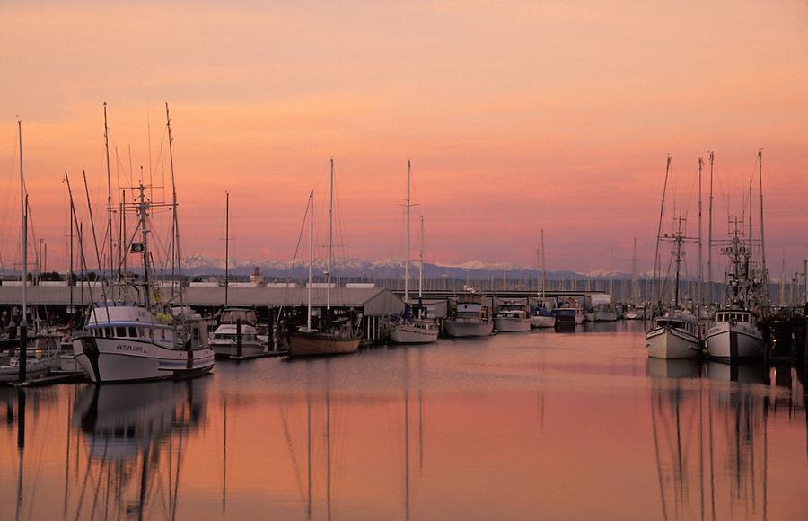 Everett Marina at sunrise with Olympic Mountains in background, Everett, Washington