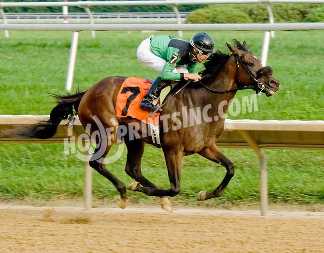 Jaggermama winning. at Delaware Park on 9/6/12