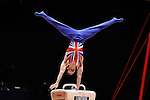 World Championships Gymnastics Individual Apparatus Finals  2015 SSE Hydro Arena. Max Whitlock