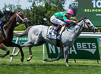 ELMONT, NY - JUNE 10: Disco Partner #2, ridden by Irad Ortiz Jr., wins the Jaipur Invitational Stakes on Belmont Stakes Day at Belmont Park on June 10, 2017 in Elmont, New York (Photo by Sue Kawczynski/Eclipse Sportswire/Getty Images)