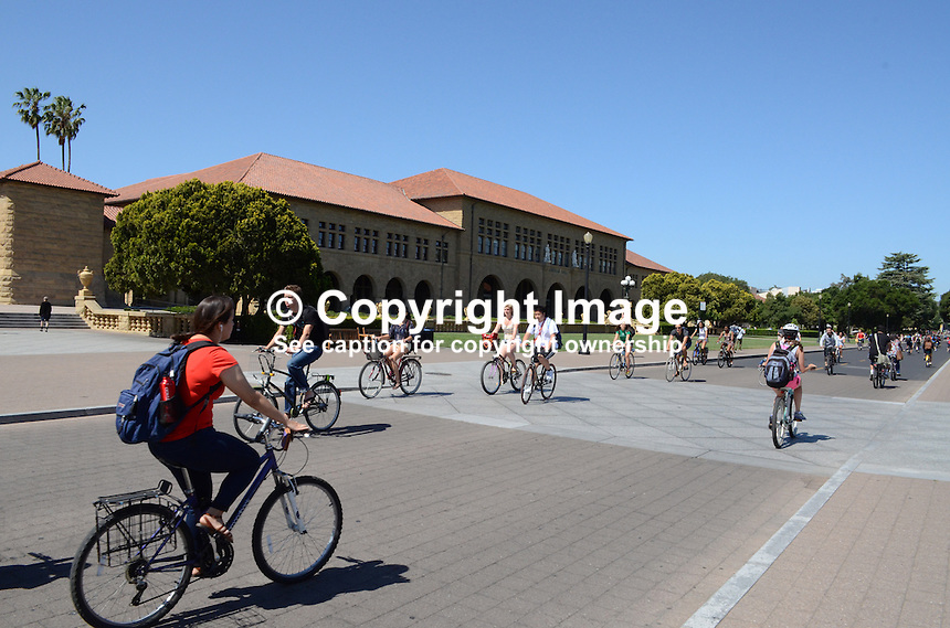 Students at Stanford University, Stanford, California, USA, find bicycles an efficient way to move around the extensive campus. Taken May 2013. 201305022342<br /> <br /> Copyright Image from Victor Patterson, 54 Dorchester Park, Belfast, UK, BT9 6RJ<br /> <br /> Tel: +44 28 9066 1296<br /> Mob: +44 7802 353836<br /> Voicemail +44 20 8816 7153<br /> Skype: victorpattersonbelfast<br /> Email: victorpatterson@me.com<br /> Email: victorpatterson@ireland.com (back-up)<br /> <br /> IMPORTANT: If you wish to use this image or any other of my images please go to www.victorpatterson.com and click on the Terms &amp; Conditions. Then contact me by email or phone with the reference number(s) of the image(s) concerned.