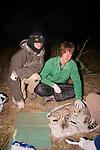 Matt & Nick With Geoffroy's Cat