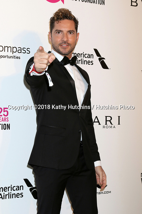 LOS ANGELES - MAR 4:  David Bisbal at the 2018 Elton John AIDS Foundation Oscar Viewing Party at the West Hollywood Park on March 4, 2018 in West Hollywood, CA