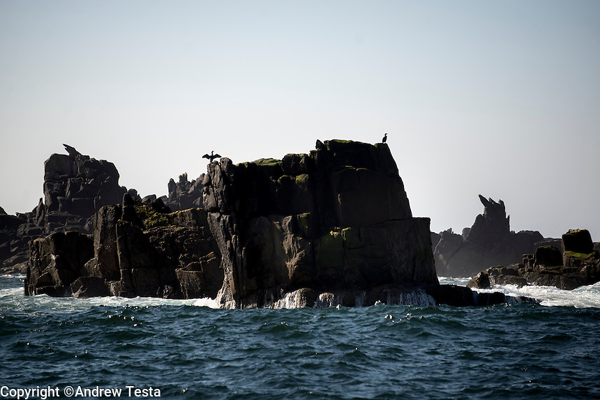 UK. St Mary's. 31st May 2013<br /> Rock outcrops known as the Haycocks next to the island of Annet, an uninhabited island that is a bird sanctuary.<br /> &copy;Andrew Testa for the New York Times