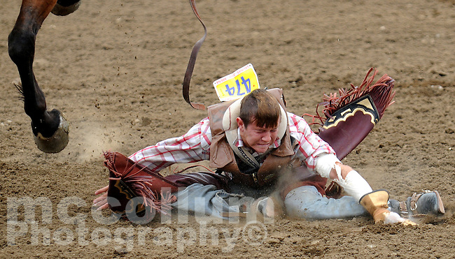 Bareback Bronc Rider Casey Parmenter, of Alma Arizona, has one wild ride, a painful looking landing, and a little embarrassed look to colleagues in the chutes at the California Rodeo Salinas.