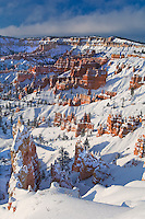 730750098 clearing winter storm at sunrise from sunset point in bryce canyon national park utah