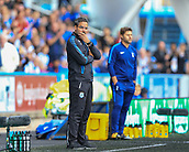 30th September 2017, The John Smiths Stadium, Huddersfield, England; EPL Premier League football, Huddersfield Town versus Tottenham Hotspur; David Wagner Huddersfield Town's manager feels the pressure as his side trail 3-0