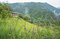 San Jorge Eco-Lodge, Tandayapa Valley, Ecuador