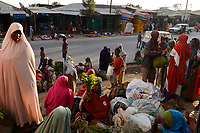ETHIOPIA , Oromia, Alem Maya, chewing drug khat market, somali women sell fresh harvested khat leaves at the road, the khat is grown in the surounding villages / AETHIOPIEN, Oromia, Alem Maya, Markt fuer die Kaudroge Khat, die in den umliegenden Doerfern angebaut wird, Somali Frauen verkaufen frisch geerntete Kat Blaetter