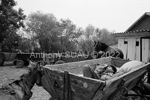 Gostavatu, Wallachia<br /> Romania<br /> May 7, 1992<br /> <br /> Mill