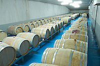 barrels with fermenting wine Bodegas Margon , DO Tierra de Leon , Pajares de los Oteros spain castile and leon