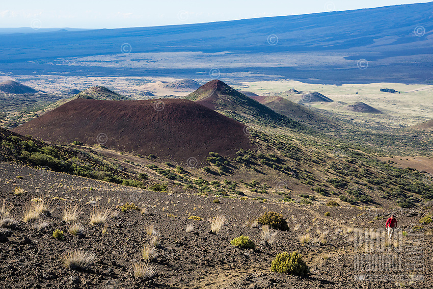 A hiker on Mauna Kea Summit Trail, with cinder cones (or pu'u) and the slope of Mauna Loa in the background, Big Island of Hawai'i.