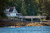 USA, Alaska, Ketchikan, a group of kayakers in the water off the Behm Canal near Clarence Straight, Knudsen Cove along the Tongass Narrows