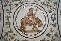 Pictures of a Roman mosaics design depicting Dionysus Riding a Panther, from Abdel Jelil. 2nd century AD. El Djem Archaeological Museum, El Djem, Tunisia.