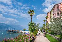 Italy, Veneto, Lake Garda, Brenzone sul Garda: lakeside restaurant Al Vas | Italien, Venetien, Gardasee, Brenzone sul Garda: in der Saisosn kann man bei schoenem Wetter in Freien direkt am Wasser speisen, das Ristorante Al Vas macht's moeglich