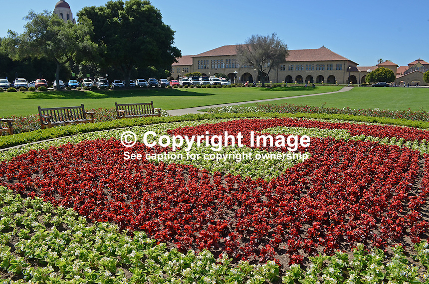 Parkland, grounds, Stanford University, California, 201305022307<br /> <br /> Copyright Image from Victor Patterson, 54 Dorchester Park, Belfast, UK, BT9 6RJ<br /> <br /> Tel: +44 28 9066 1296<br /> Mob: +44 7802 353836<br /> Voicemail +44 20 8816 7153<br /> Skype: victorpattersonbelfast<br /> Email: victorpatterson@me.com<br /> Email: victorpatterson@ireland.com (back-up)<br /> <br /> IMPORTANT: If you wish to use this image or any other of my images please go to www.victorpatterson.com and click on the Terms &amp; Conditions. Then contact me by email or phone with the reference number(s) of the image(s) concerned.