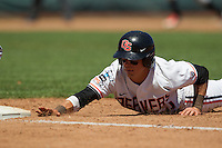 Oregon State second baseman Andy Peterson (14) dives back to first base after a pick off attempt against the Louisville Cardinals during Game 5 of the 2013 Men's College World Series on June 17, 2013 at TD Ameritrade Park in Omaha, Nebraska. The Beavers defeated Cardinals 11-4, eliminating Louisville from the tournament. (Andrew Woolley/Four Seam Images)