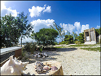 BNPS.co.uk (01202 558833)<br /> Pic: WillowReed/BNPS<br /> <br /> Unleash your inner Robinson Crusoe with an idyllic Caribbean island off the coast of Belize up for grabs.<br /> <br /> Brit Willow Reed, 40, is selling the stunning island of Virginia Caye, a nature haven of just under four acres, through eBay.<br /> <br /> The starting bid is &pound;400,000 or, if they don't want the risk of losing out to a higher bidder, someone could pay the 'buy it now' price of &pound;750,000.<br /> <br /> For that the lucky buyer will get their own private piece of paradise where they can escape the British weather or they could invest more money to turn the island into a popular tourist retreat.