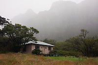 The Paliku cabin deep in the crater of HALEAKALA NATIONAL PARK on Maui in Hawaii is immersed in fog