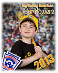 2013 Burlington American Sunflowers