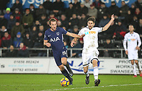 Harry Kane of Spurs & Federico Fernandez of Swansea City during the Premier League match between Swansea City and Tottenham Hotspur at the Liberty Stadium, Swansea, Wales on 2 January 2018. Photo by Mark Hawkins / PRiME Media Images.