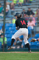 Logan Taylor (14) of the Great Falls Voyagers at bat against the Helena Brewers at Centene Stadium on August 18, 2017 in Helena, Montana.  The Voyagers defeated the Brewers 10-7.  (Brian Westerholt/Four Seam Images)