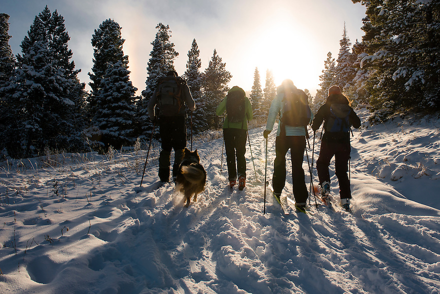 Cross-country skiers explore Ross Pass in the Bridger Mountains near Bozeman, Montana.