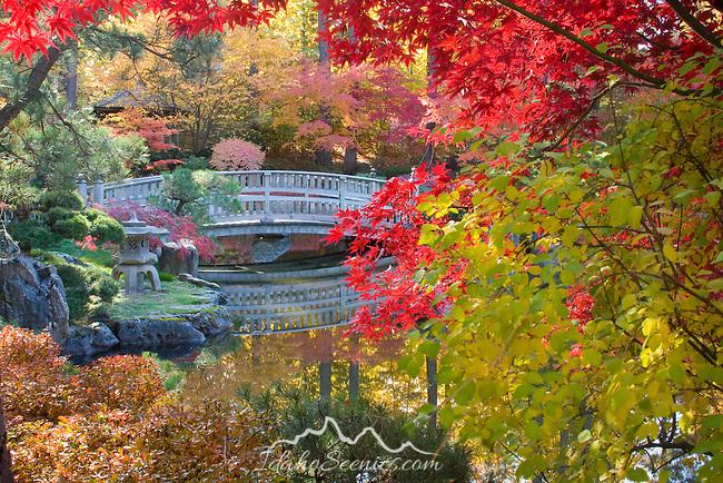 Bridge over the Kiri Pond at Nishinomiya Japanese Garden in Spokane Washington.