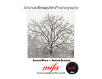 "Michael Knapstein's image ""Blizzard Oak"" won Second Place (Silver) in the Nature/Seasons category of the 2017 Moscow International Fotographic Awards (MIFA)."