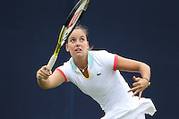 2011 AEGON International