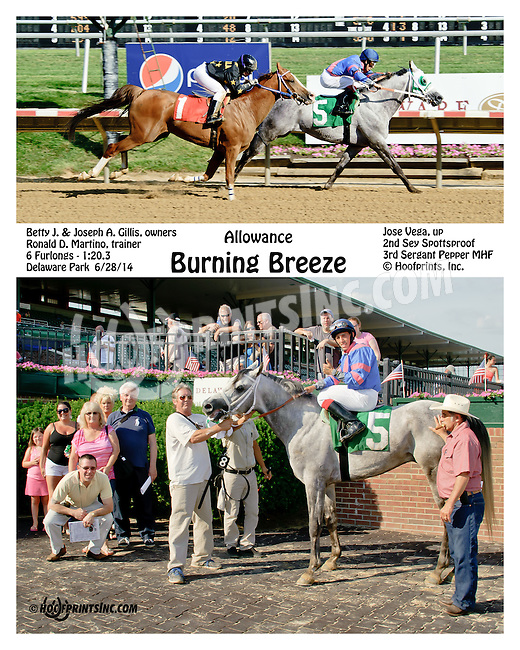 Burning Breeze winning at Delaware Park racetrack on 6/28/14