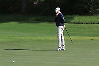 Cormack Sharvin (NIR) on the 10th green during the Pro-Am of the Challenge Tour Grand Final 2019 at Club de Golf Alcanada, Port d'Alcúdia, Mallorca, Spain on Wednesday 6th November 2019.<br /> Picture:  Thos Caffrey / Golffile<br /> <br /> All photo usage must carry mandatory copyright credit (© Golffile | Thos Caffrey)