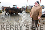 Pat Browne from Glenderry, Ballyheigue who is worried about the drop in the price been given to beef farmers.