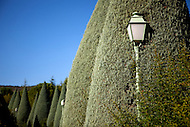 An old fashion street lamp emerges from a large green shrub outside of Gordes, France