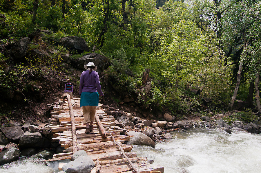 Western tourist carefully crossing the swollen Kanka River on a rickety wodden bridge, Naranag, Gangabal Lake region, Kashmir Himalayas, India